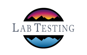 Holistic Addiction Treatment incorporates Lab Testing