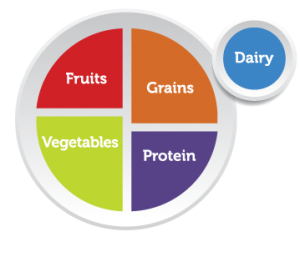 Nutrition My Plate